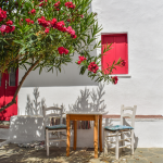 ¿Quieres decorar el jardín?:  Nuestros 5 consejos