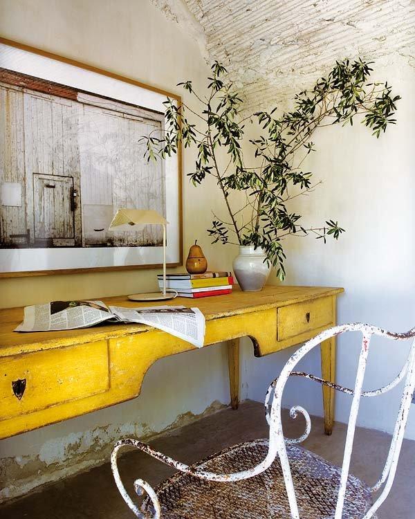 Ramas de olivo acebuche en estilo mediterráneo